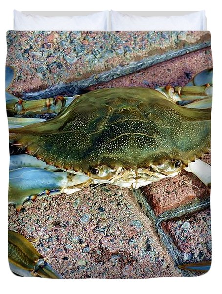 Duvet Cover featuring the photograph Hudson River Crab by Lilliana Mendez