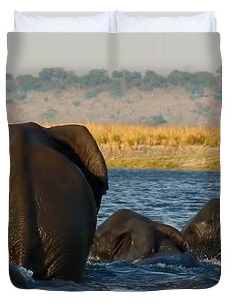 Duvet Cover featuring the photograph Kalahari Elephants Crossing Chobe River by Amanda Stadther