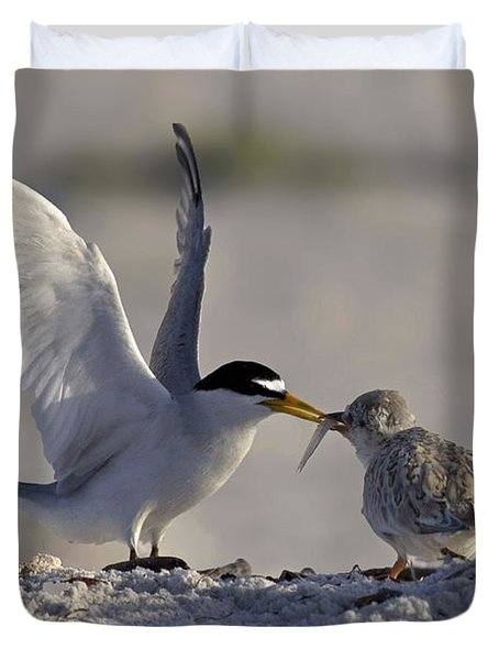 Least Tern Feeding It's Young Duvet Cover