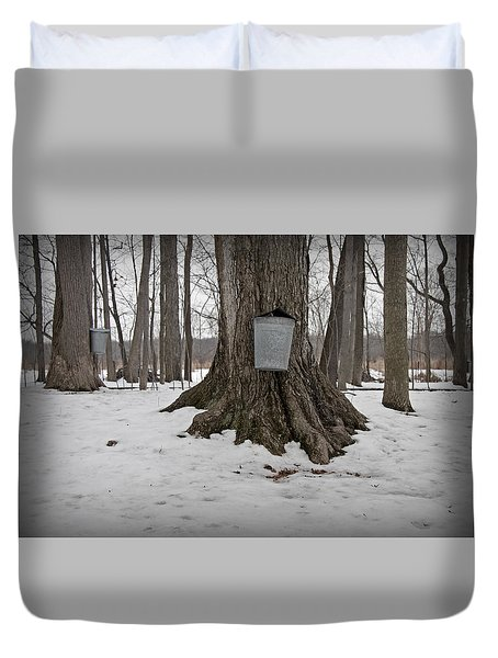 Maple Sugaring Duvet Cover