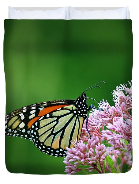 Monarch In Light  Duvet Cover by Neal Eslinger