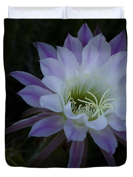 Night Blooming Cactus  Duvet Cover