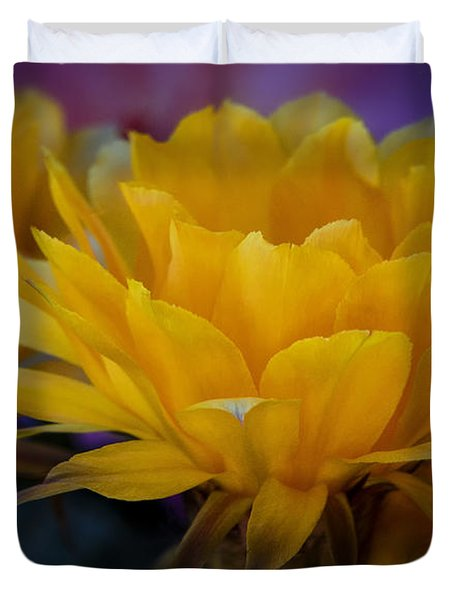 Orange Cactus Flowers  Duvet Cover