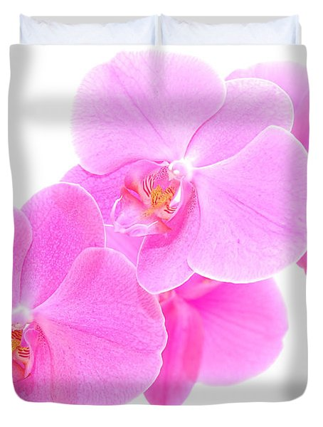 Orchid Isolated Duvet Cover by Michal Bednarek