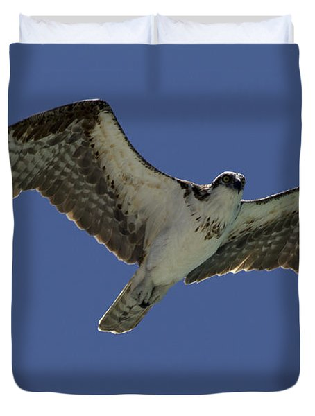 Duvet Cover featuring the photograph Osprey In Flight Photo by Meg Rousher
