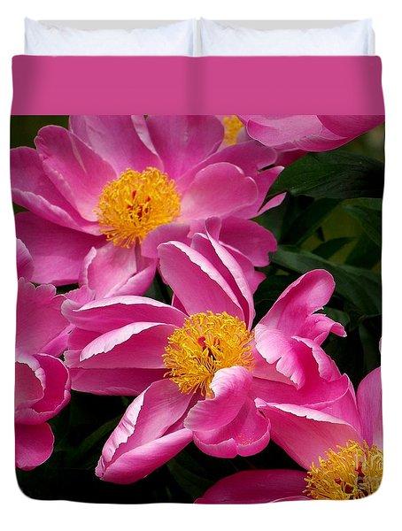 Pink Petals Duvet Cover