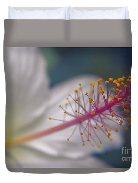 Duvet Cover featuring the photograph Pua Aloalo - Koki'o Ke'oke'o - Hibiscus Arnottianus - Hawaiian White Hibiscus  by Sharon Mau