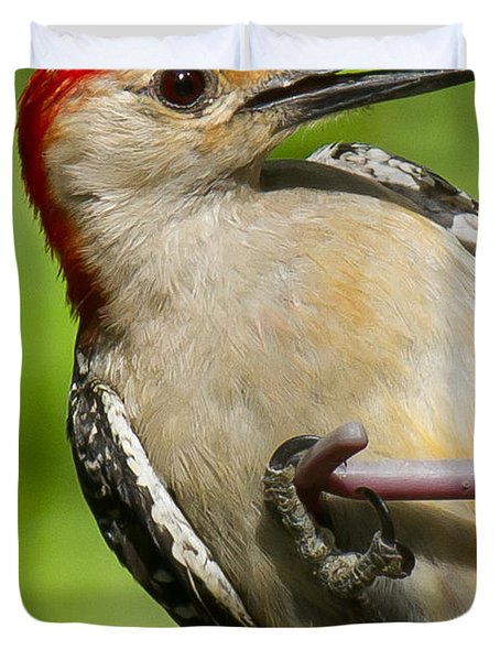 Red Bellied Woodpecker Duvet Cover