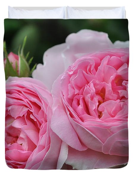 Rose Constance Spry Duvet Cover by Sabine Edrissi