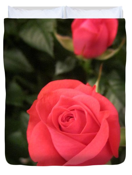 Roses In Red Duvet Cover
