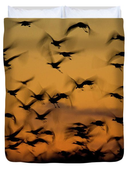 Sandhill Migration Duvet Cover