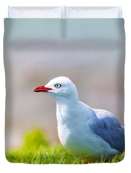 Seagull Duvet Cover by MotHaiBaPhoto Prints