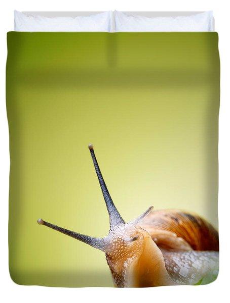 Snail On Green Stem Duvet Cover