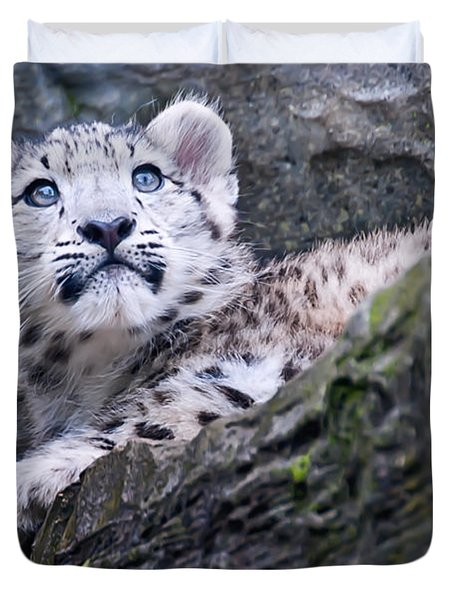 Snow Leopard Cub Duvet Cover