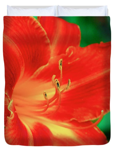 Red, Orange And Yellow Lily Duvet Cover