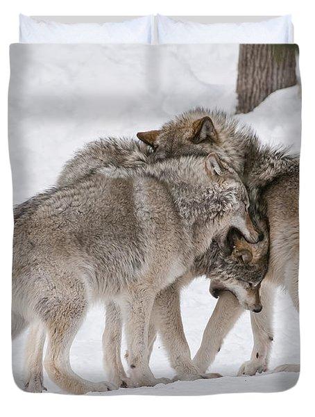 Timber Wolves Duvet Cover