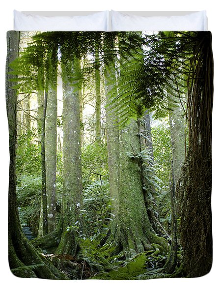 Tropical Forest  Duvet Cover by Les Cunliffe