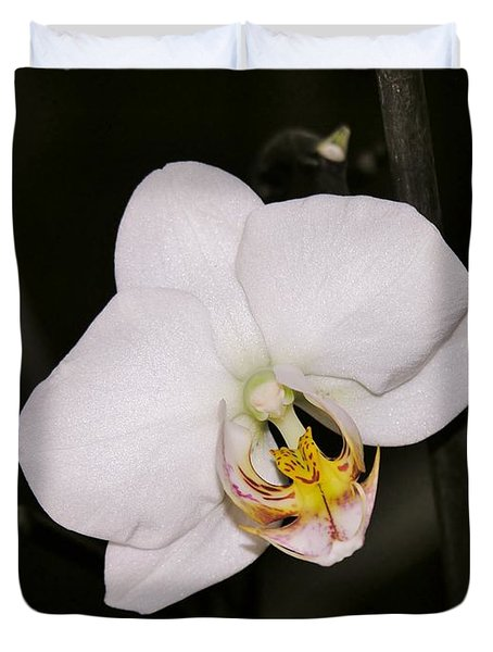 Duvet Cover featuring the photograph White Orchid by Sherman Perry