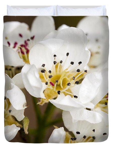 Beautiful White Spring Blossom Duvet Cover