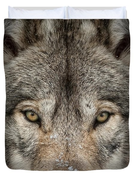 Timber Wolf Pictures Duvet Cover