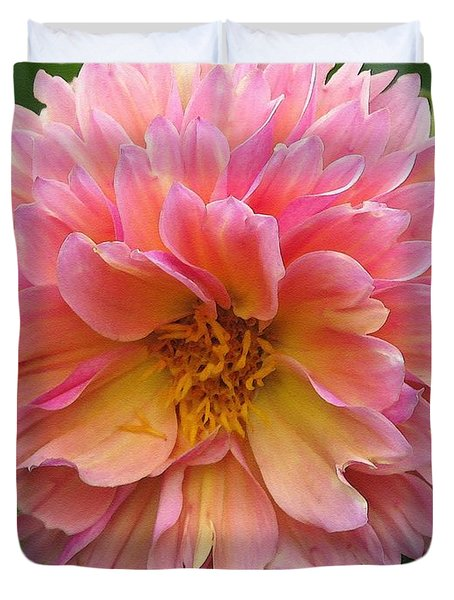 Dahlia From The Showpiece Mix Duvet Cover by J McCombie