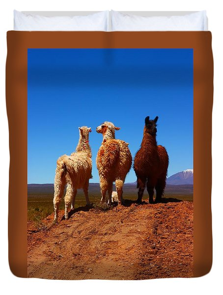 3 Amigos Duvet Cover by FireFlux Studios