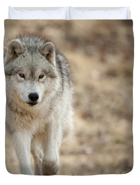 Duvet Cover featuring the photograph Arctic Wolf by Wolves Only