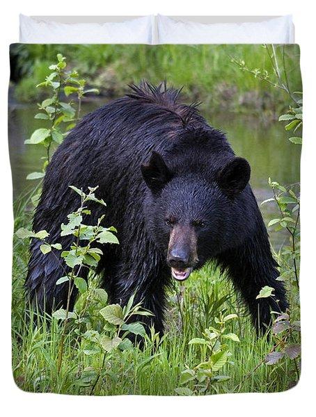 Black Bear Duvet Cover by Linda Freshwaters Arndt