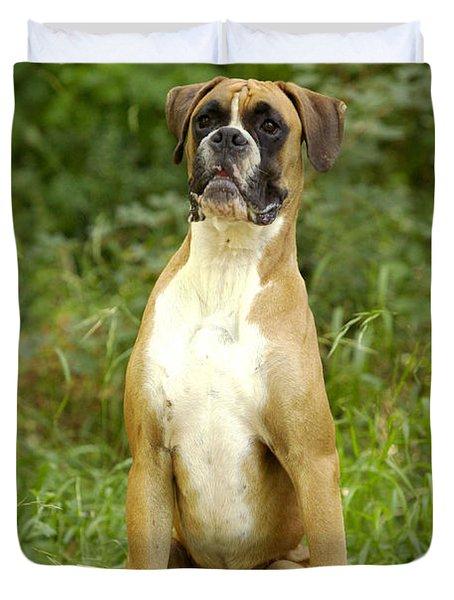 Boxer Dog Duvet Cover by Jean-Michel Labat