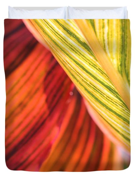 Canna Lily Named Durban Duvet Cover by J McCombie