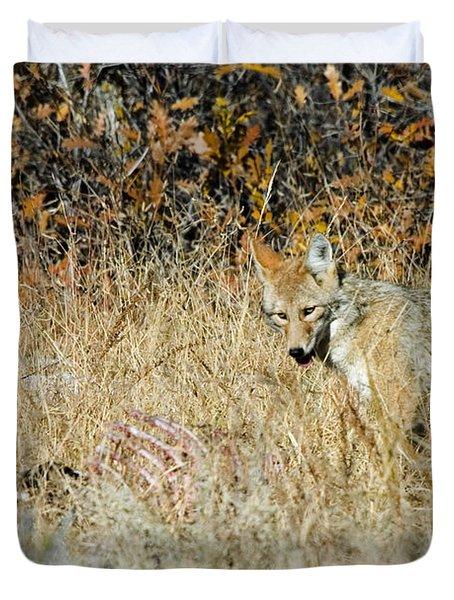 Coyotes Duvet Cover