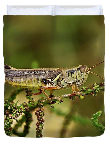 Duvet Cover featuring the photograph Grasshopper by Olga Hamilton