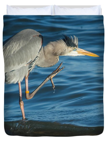 Great Blue Heron Duvet Cover by Jane Luxton