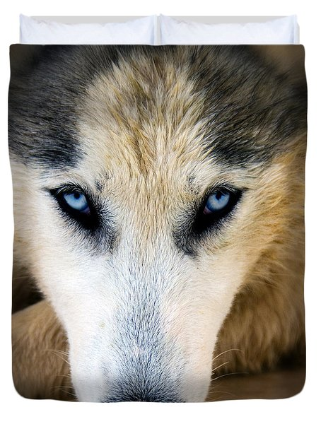 Husky  Duvet Cover by Stelios Kleanthous