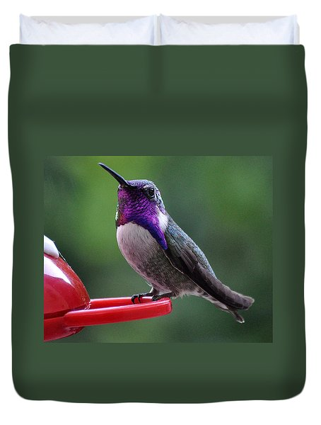 Duvet Cover featuring the photograph Juvenile Male Costa by Jay Milo