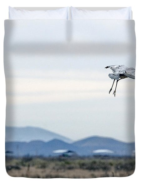 Sandhill Cranes Duvet Cover by Tam Ryan