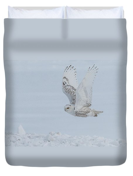 Snowy Owl #3/3 Duvet Cover by Patti Deters