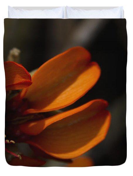 Wiliwili Flowers - Erythrina Sandwicensis - Kahikinui Maui Hawaii Duvet Cover by Sharon Mau