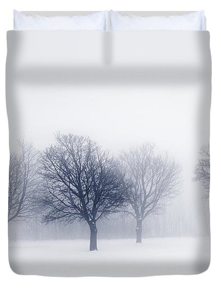 Winter Trees In Fog Duvet Cover by Elena Elisseeva