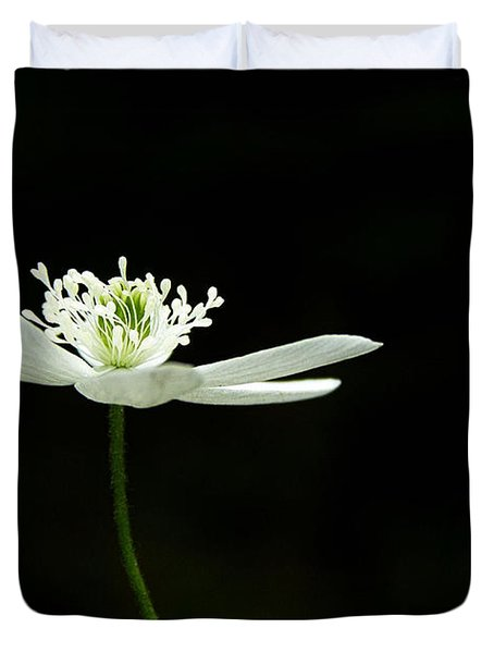 Wood Anenome Duvet Cover by Angie Rea