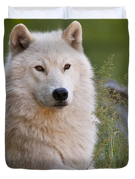Arctic Wolf Duvet Cover by Wolves Only
