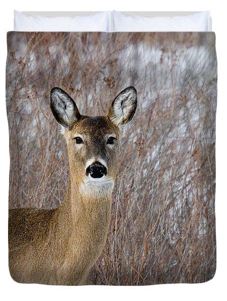 White-tailed Doe Duvet Cover