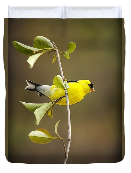American Goldfinch Duvet Cover by Christina Rollo
