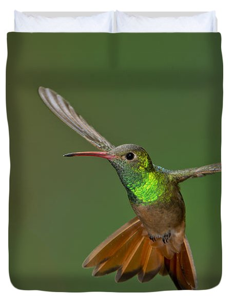 Buff-bellied Hummingbird Duvet Cover by Anthony Mercieca