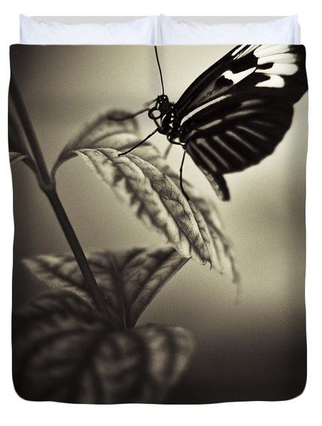 Butterfly Brown Tone Duvet Cover by Bradley R Youngberg