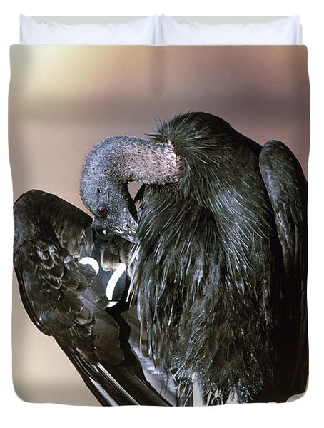 California Condor Duvet Cover