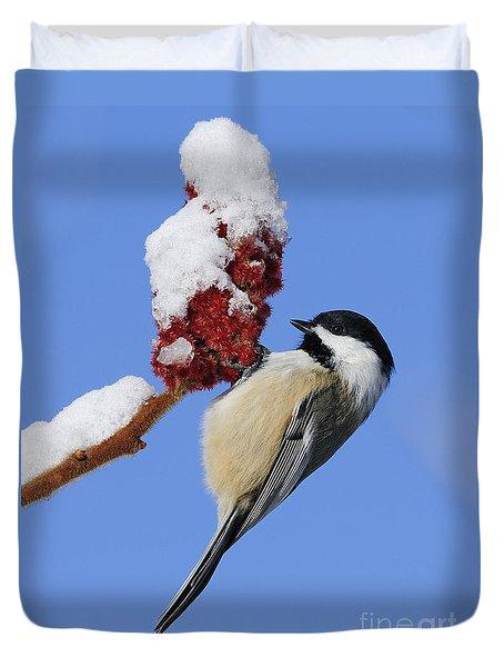 Chickadee Love... Duvet Cover
