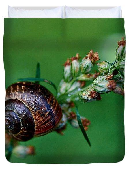 Copse Snail Duvet Cover by Jouko Lehto