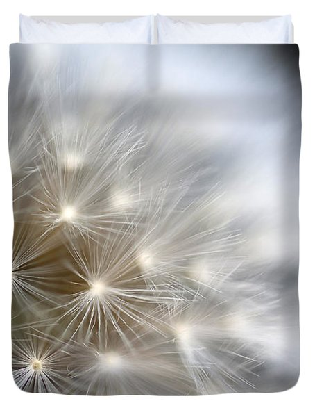 Dandelion Backlit Close Up Duvet Cover