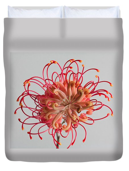 Duvet Cover featuring the photograph Grevillea Flower by Shirley Mitchell